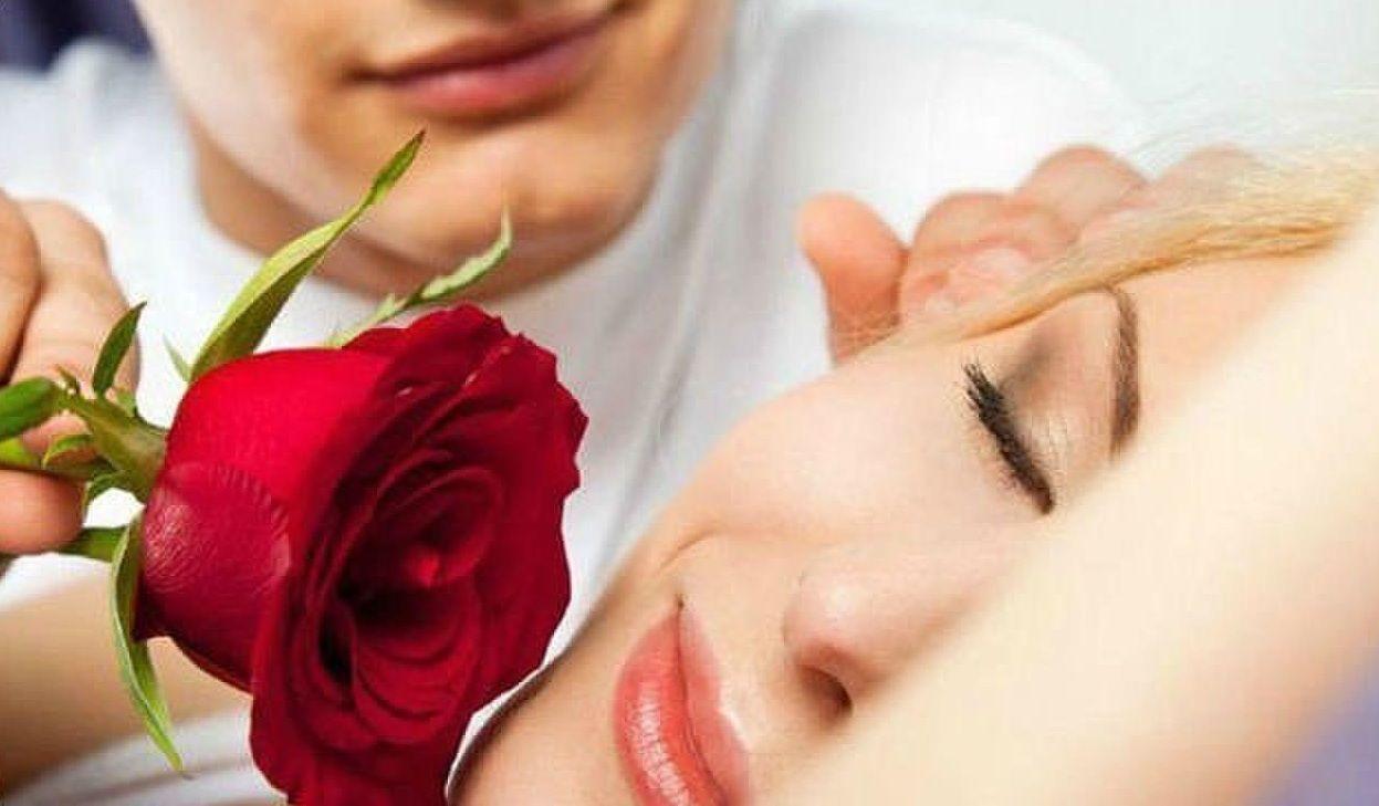 Фото: Роза пробуждения