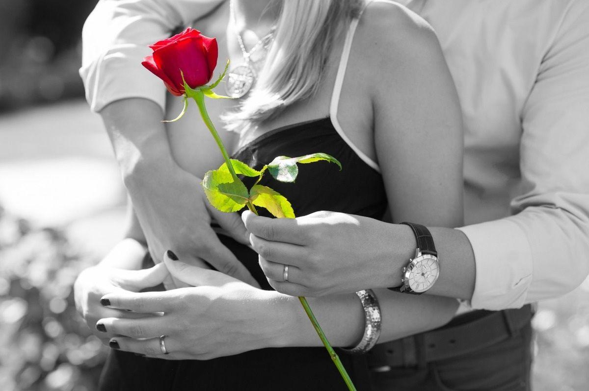 Фото: Роза подарок любимой