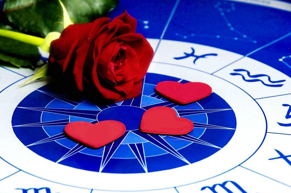 Фото: Роза выбора зодиака