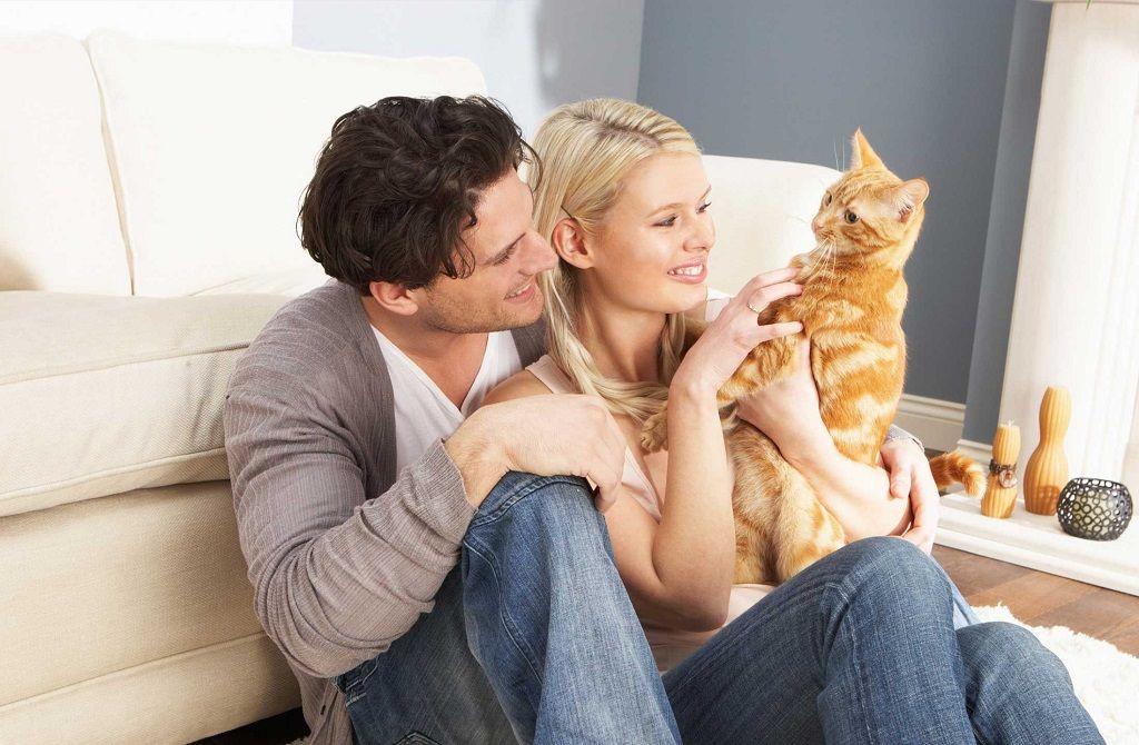 Фото: Семья с котом