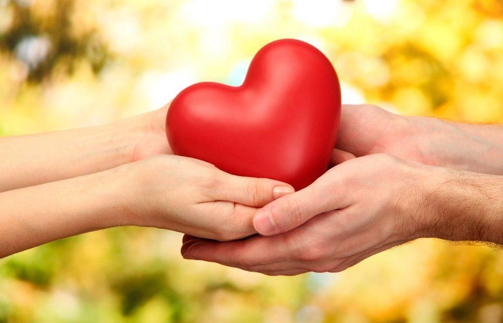 Фото: Сердце в ладошках