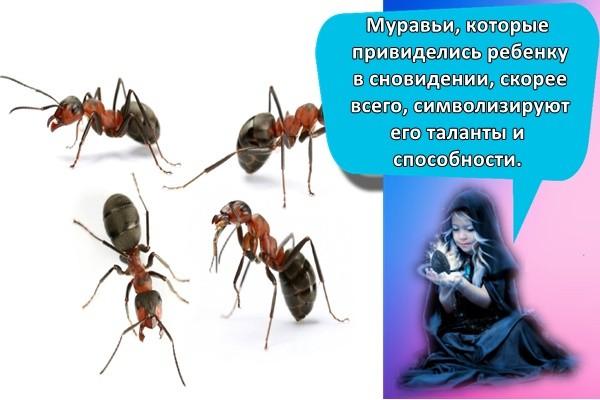 муравьи маленькие
