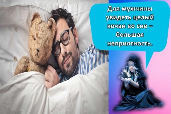 Для мужчины увидеть целый кочан во сне – большая неприятность.