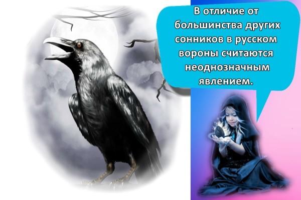 В отличие от большинства других сонников в русском вороны считаются неоднозначным явлением.