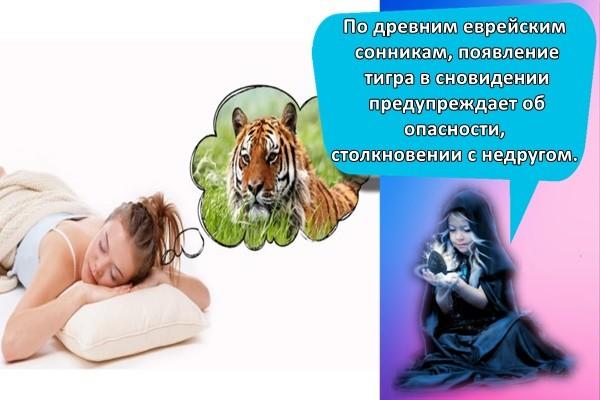 тигр и девушка