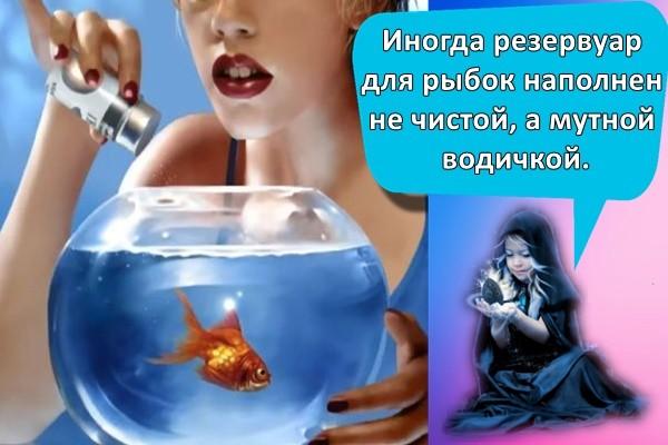 Иногда резервуар для рыбок наполнен не чистой, а мутной водичкой.