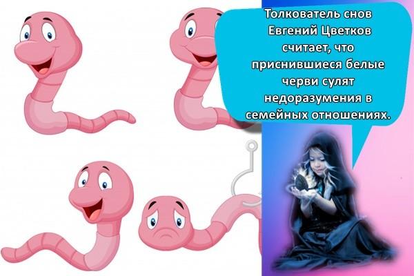 разные черви