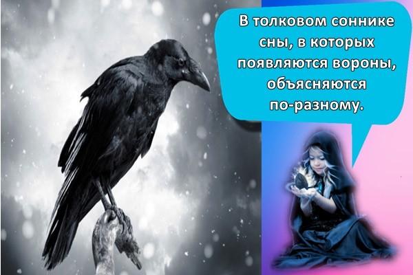 В толковом соннике сны, в которых появляются вороны, объясняются по-разному.