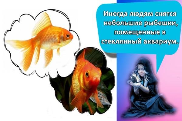 Иногда людям снятся небольшие рыбешки, помещенные в стеклянный аквариум.