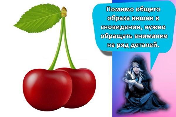 Помимо общего образа вишни в сновидении, нужно обращать внимание на ряд деталей.