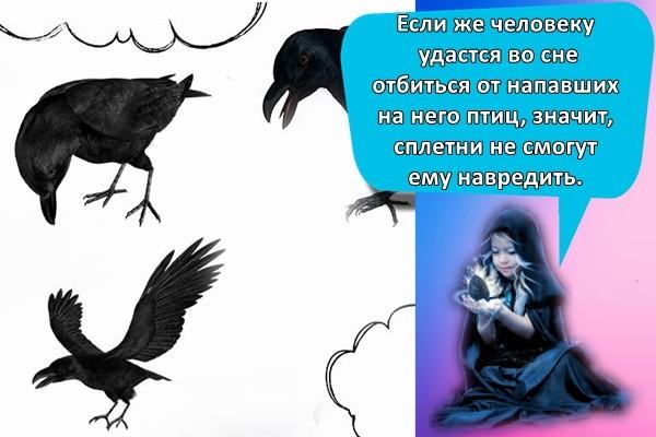 Если же человеку удастся во сне отбиться от напавших на него птиц, значит, сплетни не смогут ему навредить.