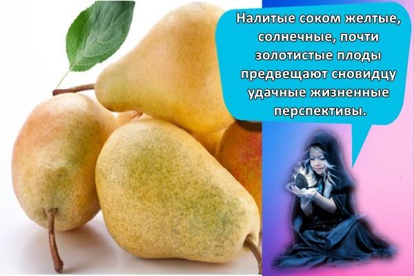Налитые соком желтые, солнечные, почти золотистые плоды предвещают сновидцу удачные жизненные перспективы.