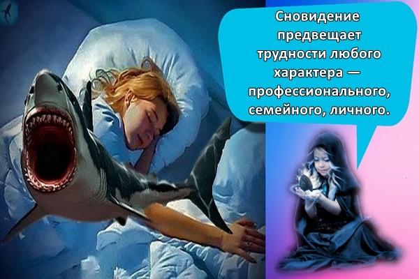 Сновидение предвещает трудности любого характера — профессионального, семейного, личного.