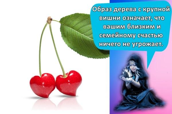 Образ дерева с крупной вишни означает, что вашим близким и семейному счастью ничего не угрожает.