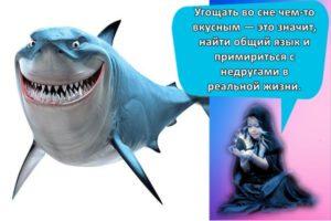 К чему может сниться акула, толкование популярных сонников и трактовка