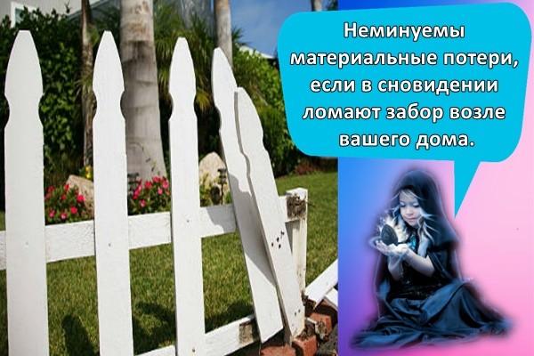 Неминуемы материальные потери, если в сновидении ломают забор возле вашего дома.