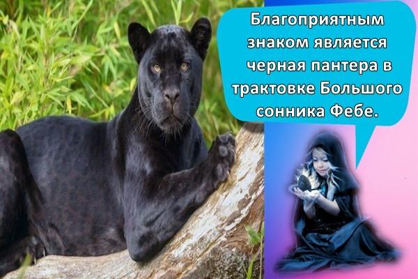 Благоприятным знаком является черная пантера в трактовке Большого сонника Фебе.