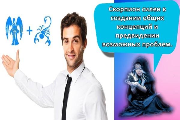 Скорпион силен в создании общих концепций и предвидении возможных проблем.