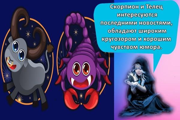Скорпион и Телец интересуются последними новостями, обладают широким кругозором и хорошим чувством юмора.
