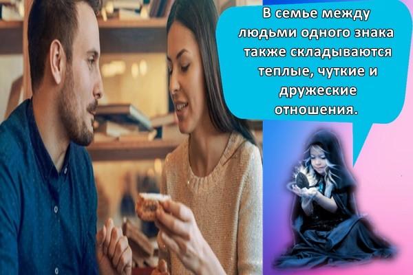 В семье между людьми одного знака также складываются теплые, чуткие и дружеские отношения.